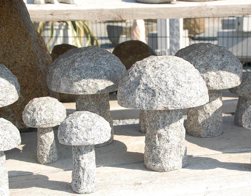 Pilze, Granit
