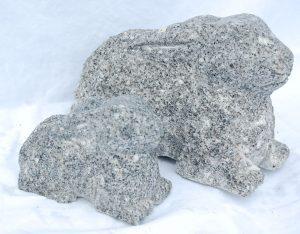 Hasen, Granit